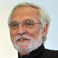 Manuel Augusto Araújo